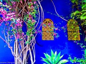 Marrakech-Majorelle-Gardens-18